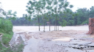 Tân Sơn: Mưa lũ gây thiệt hại trên 2 tỷ đồng.