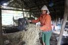 Nhờ chăn nuôi nhiều người dân trong xã đã thoát nghèo