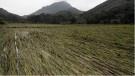 Tân Sơn: Thiệt hại trên 600 triệu đồng do mưa lớn kéo dài