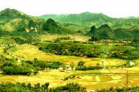 Trung tâm xã Thu Cúc
